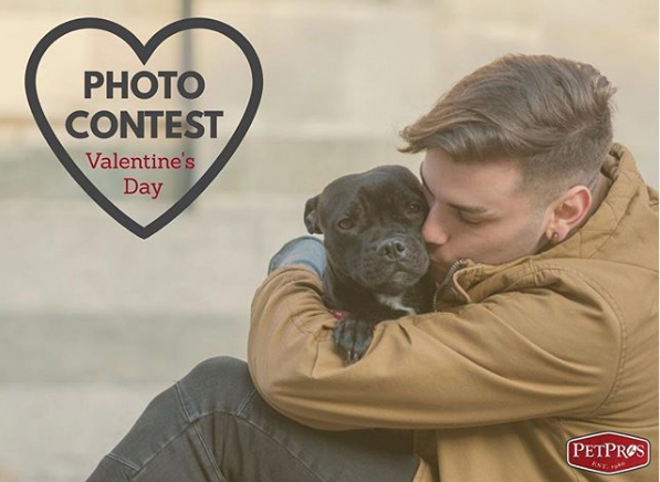 """Pet Pros on Instagram """"We are having a photo contest on our Facebook page Head on over and share a pic of you loving your pet for a chance to win a petpros gift…"""""""