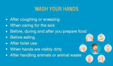How Soap or Alcohol Based Hand Sanitizers Can Eliminate Corona Virus