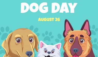 Custom Gifts to Pamper your Poodles on National Dog Day!